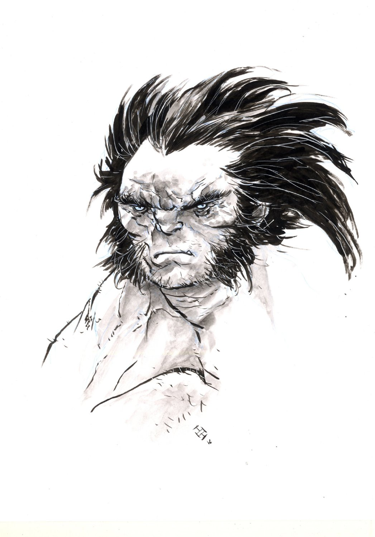 Savage Wolverine Bust Commission