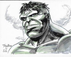 Hulk Comission Page Commission Comic Art